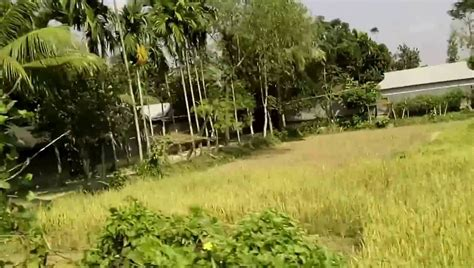 beautiful house in bangladesh beautiful house in bangladesh best free home design