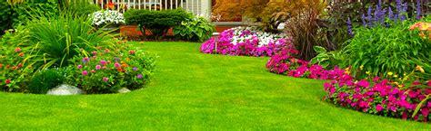 go green landscaping designs for backyard landscapes landscaping in rock hill sc images landscaping marlton nj