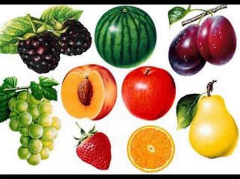 alimentos transgenicos alimentos transgenicos youtube