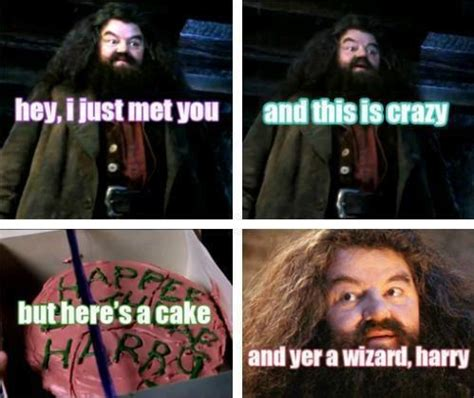 Hagrid Meme - i am back with best moments of harry potter and the