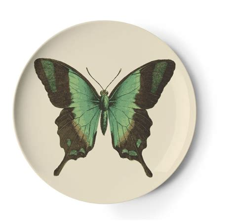 Desk Set Butterfly By Kby Shop 14 best images about thomaspaul melamine on