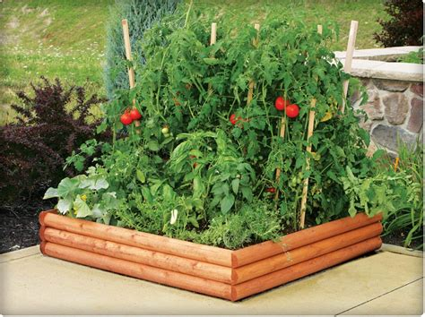 Raised Gardens Vegetables The Time To Prepare Vegetable Gardens