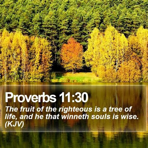bible verse fruit of the tree 718 best images about bible verses on purpose