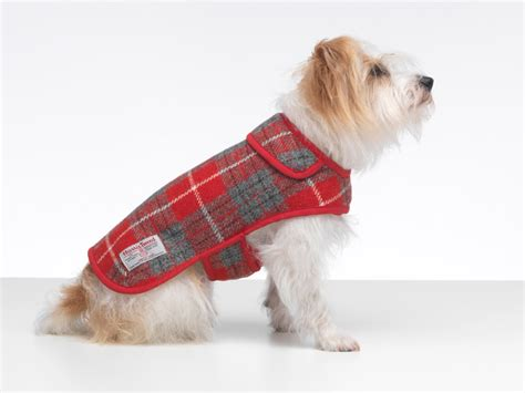puppy coat hoxton tartan harris tweed coat designer coats coats by lovemydog