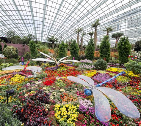 Gardens By The Bay Admission E Ticket gardens by the bay admission e ticket attractions xpress one stop station for top