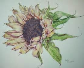 artist color pencils using colored pencil to create