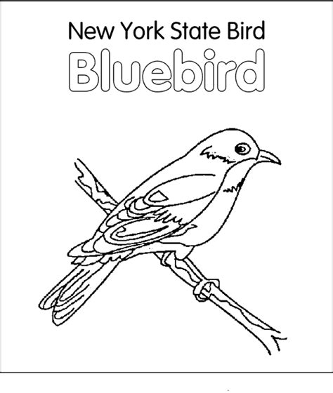 arkansas state bird and flower coloring pages top