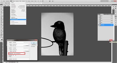 tutorial photoshop cs6 deutsch tutorial mit photoshop freistellen 187 saxoprint blog