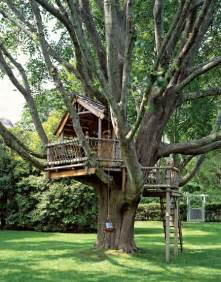 Backyard Treehouse A Backyard Treehouse Inspired By Hobbits Hooked On Houses