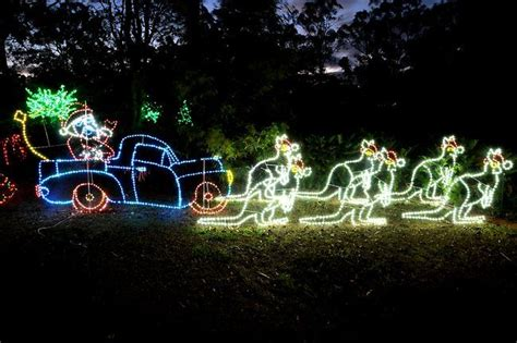 kangaroo christmas lights a light showcase ledified