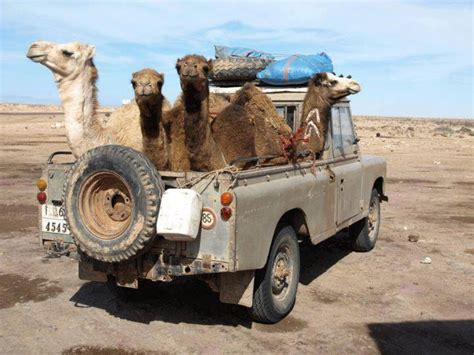 17 best images about land rover on land rover