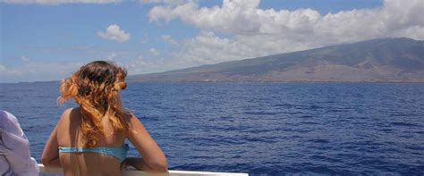 boat from hawaii to maui sightseeing boat tours on maui