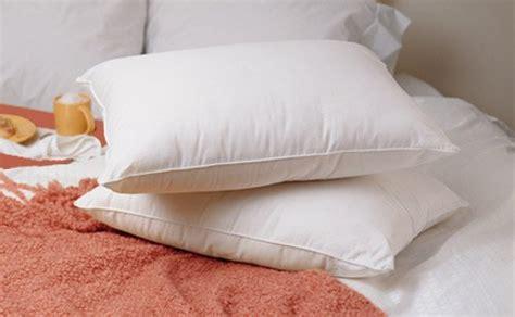 100 White Goose Pillows by Premium 100 White Goose Firm Pillow Standard Size