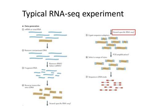 rnaseq workflow biotech autumn2012 02 ngs2