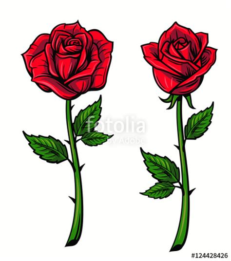 quot red rose cartoon quot stock image and royalty free vector