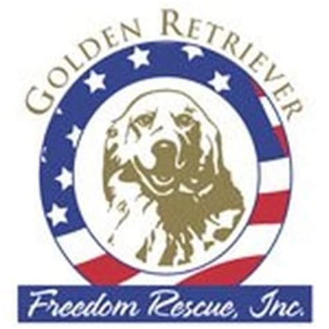 to freedom golden retriever rescue golden retriever freedom rescue community service non profit park