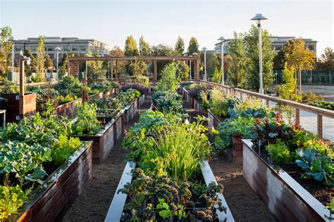 Kitchen Gardens Design by Community Garden Homestead Design Collective