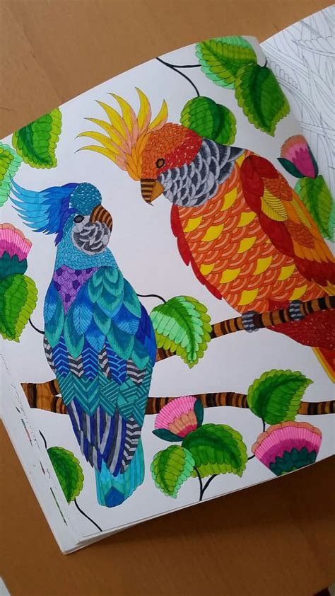 millie marottas tropical wonderland 184994346x 131 best images about tropical wonderland on tropical adultcoloring and coloring pages