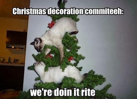 Christmas Animal Meme - 20 super funny christmas memes volume 1 sayingimages com