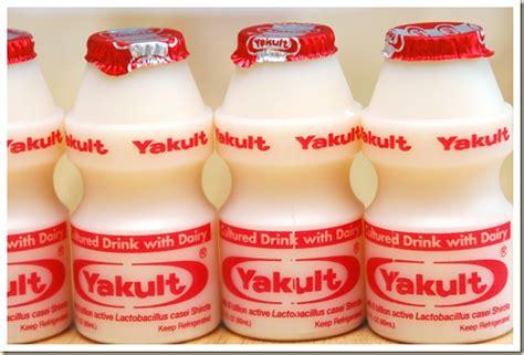 cara membuat bakteri yakult membuat susu fermentasi dengan lactobacillus casei yakult