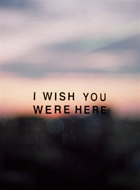 i wish you were here i wish you were here image collections