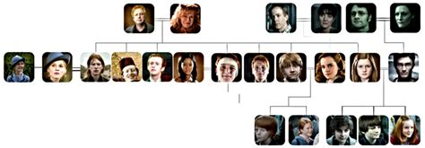 the cole family tree potter family and friends harry potter family tree picture click quiz by