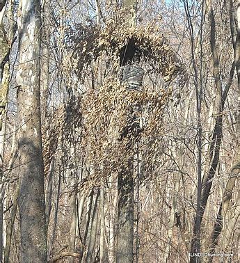 layout blind crow hunting best 25 hunting blinds ideas on pinterest