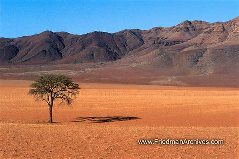 namibiya desert landscape 1