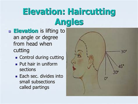 hair cutting angles haircut angles haircuts models ideas