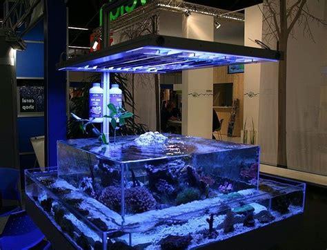 Bear Glass Custom Glass Fish Tanks   bearglassblog