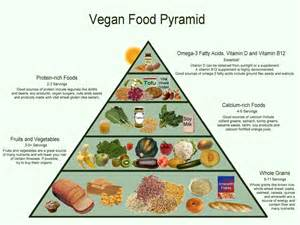 5 reasons why vegan diet may be a bad idea find health tips