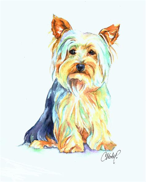 yorkie portrait painting by freeman yorkie