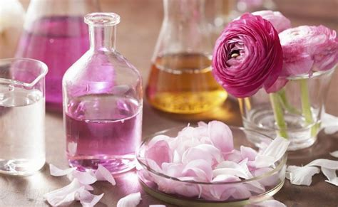 comprare fiori di bach florais de bach como usar onde comprar e muito mais