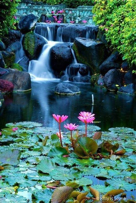 beautiful waterfalls with flowers beautiful waterfall and water garden gardening flowers patios por