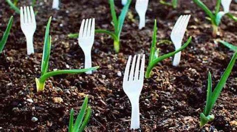 23 astuces ing 233 nieuses pour vous simplifier le jardinage