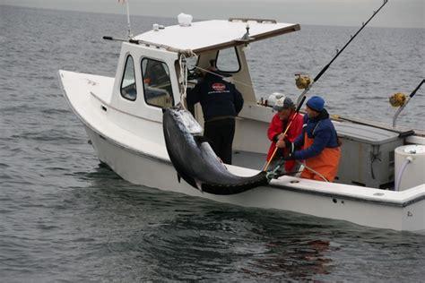 how to become fishing boat captain massachusetts tuna fishing labrador fishing charters