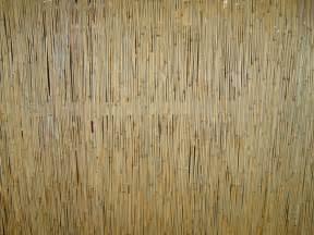 estera domian free photograph reed rushmat rush mat