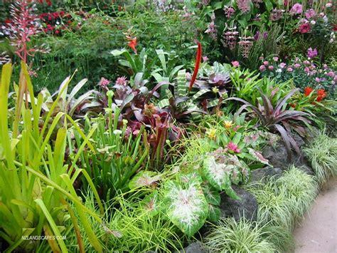 Outdoor Garden Nz Nzlandscapes Landscape Design New Zealand Nz 2006 02