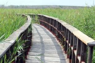 Zen Architecture photo gratuite zen pont paysage chemin nature image