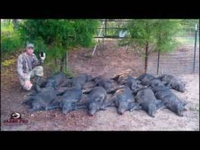 Blowing Up Wild Hogs With Tannerite » Home Design 2017