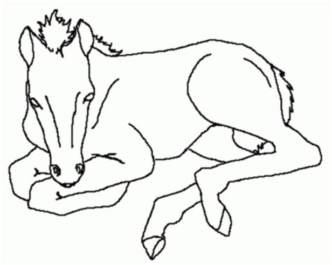 horse coloring pages preschool get this free preschool horses coloring pages to print oloev