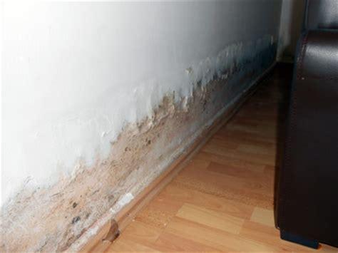 schimmel im wohnzimmer sachverstaendige zeigt wo es schimmelt