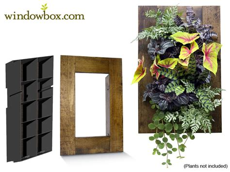 Indoor Living Wall Kit With Rustic Frame Vertical Garden Vertical Wall Garden Kits