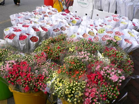 prince edward flower market new year the flower market bird market prince edward kowloon