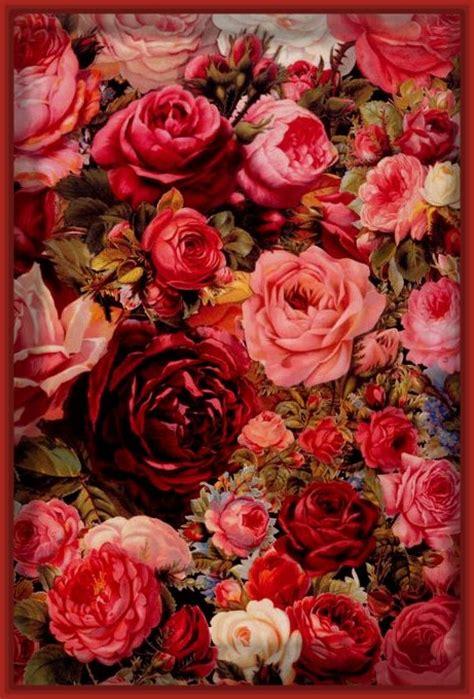 imágenes de rosas rojas naturales photo collection pantalla flores naturales rojas