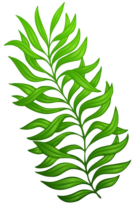 exotic green plant png clipart image sz 237 nes brushok