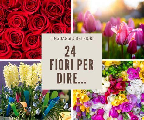 significato fiori significato dei fiori fai da te in giardino