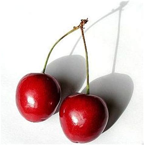 Cherrya Top cherry on top photography invited images post 1 award