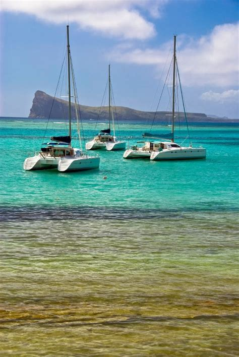 catamaran vs yacht 136 best images about boats i d like to own on pinterest