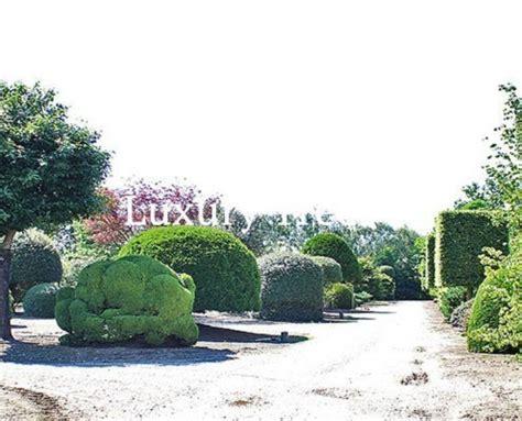 Garten Sichtschutz Mit Pflanzen by Sichtschutz 187 Luxurytrees 174 Schweiz